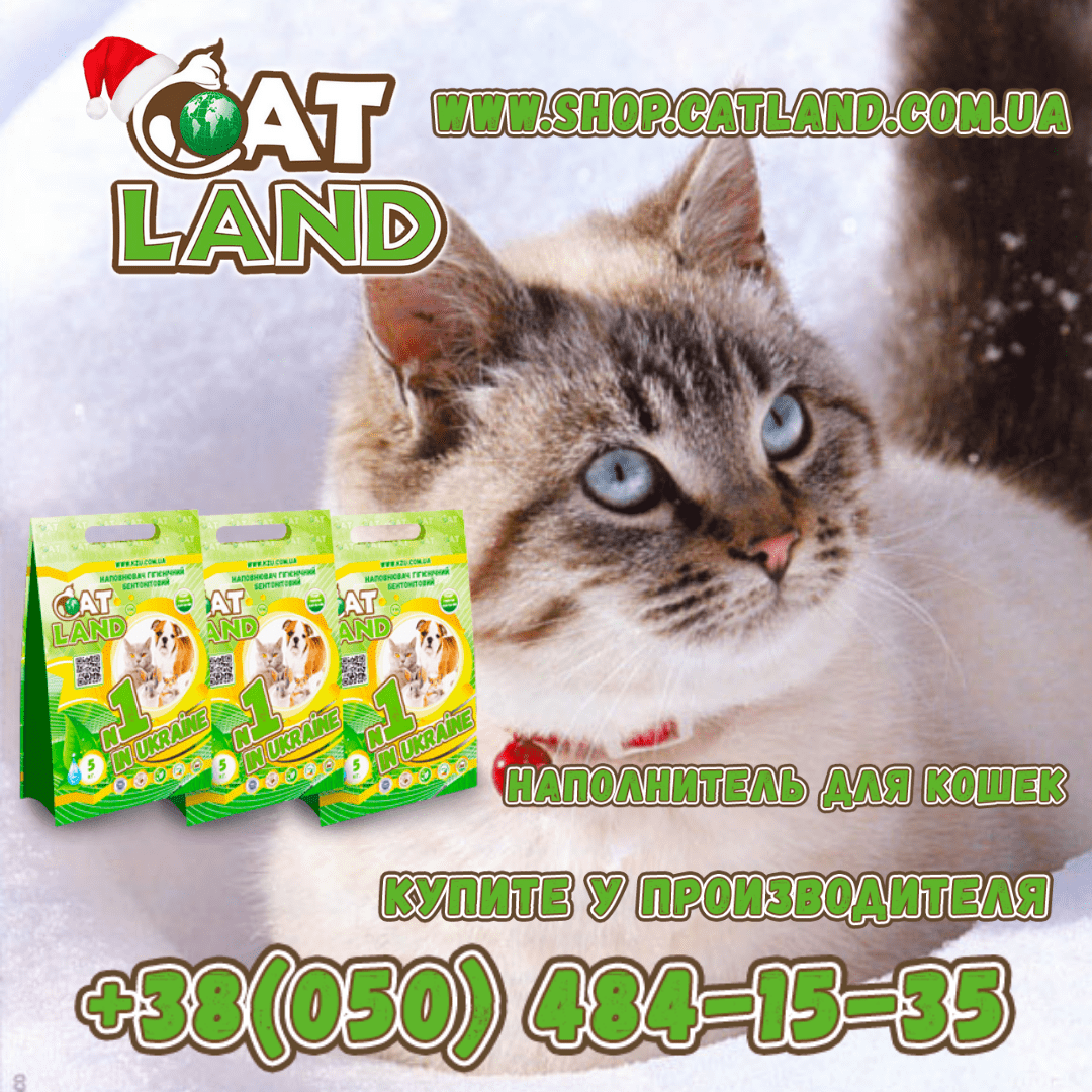 Наполнитель Cat Land для приручения к лотку.