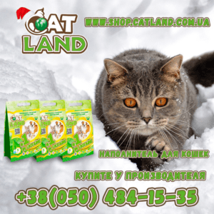 Cat Lаnd сочетает в себе главное: соотношение цена – качество!
