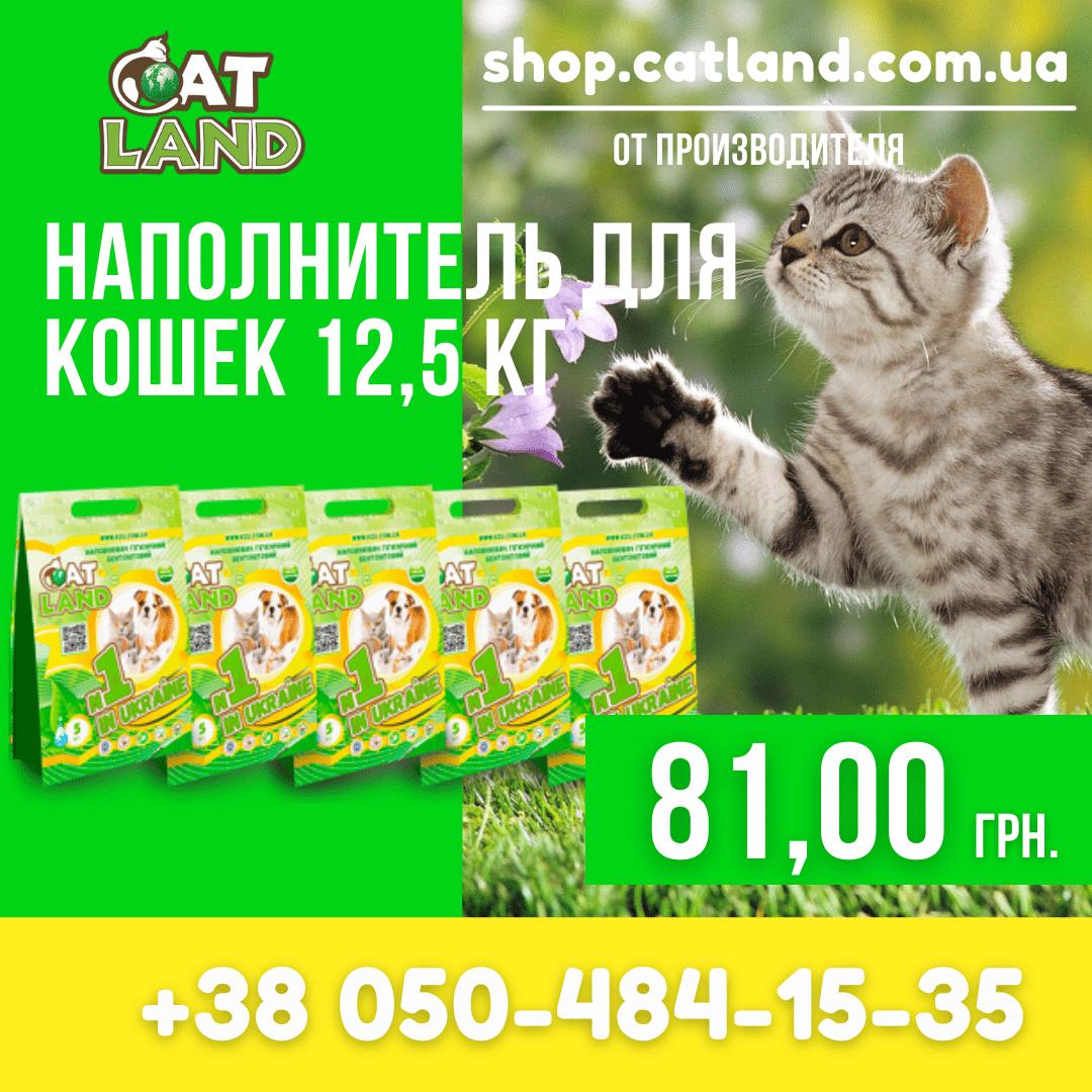 У нашому інтернет магазині www.shop.catland.com.ua Ви зможете вибрати і купити наповнювач для котячого туалету