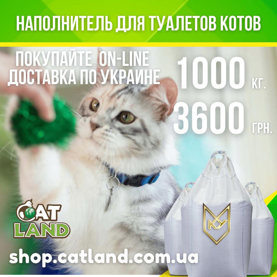 Чому варто придбати наповнювач з бентоніту Cat Land?
