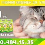 Cat Land litter for tray taming.